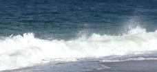 Die Welle rauscht – hier auf Sylt