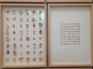 Dokumentationswand im Pavillon der Niederlande von Herman de Vries