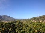 Wandern auf Mallorca: Blick auf das Tramuntana-Gebirge