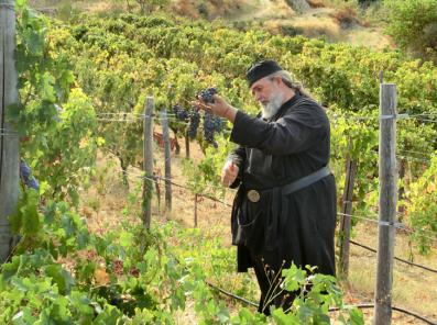 Auf Athos wird Wein angebaut - Mönch Epiphanios bei der Arbeit