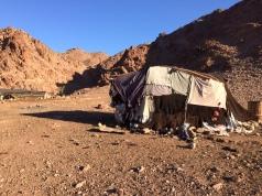Beduinenzelt im Dana Naturpark