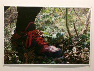 """Foto von Wolfgang Tillmanns in Garten-Ausstellung """"Jardins"""" im Grand Palais, Paris"""