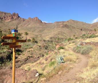 Multipler Wegweiser auf den Königswegen Gran Canarias