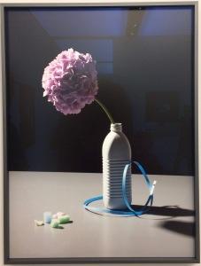 Stillleben Deluxe: Felix Dobbert, Random Flowers