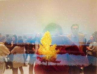 Gute Aussichten Deluxe:Selfe mit mystischer Landschaft